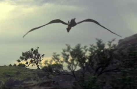 File:Pterosaur1proof.jpg