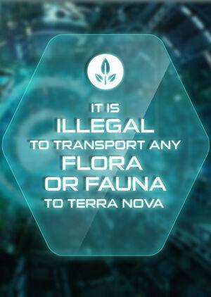 TN pos flora