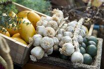 Terra Nova fruit and vegetables5