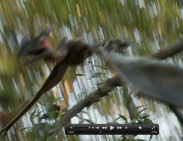 File:Pterosaur in tree.jpg