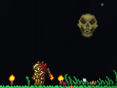 File:Baby Skeletron Head.png
