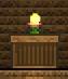 Cactus Candle.jpg