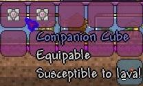 File:2 companion cubes.jpg