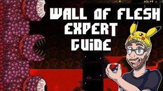 How to defeat the wall of flesh solo on expert - Terraria 1.3 Tutorial the Wall of flesh expert