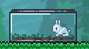 File:Bunny facing left.jpg