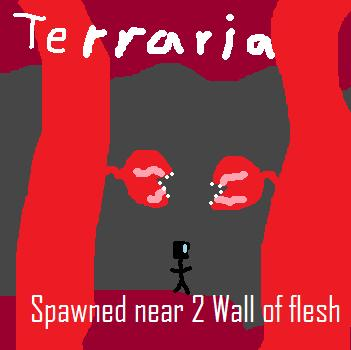 File:Terraria Spawned near 2 wall of flesh.jpg
