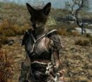 Race Mods (Skyrim)