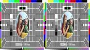 BBC Test Card X 3D