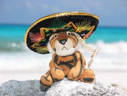 Stuffed tiger wearing a sombrero