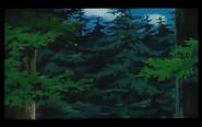 Forbidden Forest Day