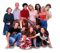 Wikia-Visualization-Main,that70sshow