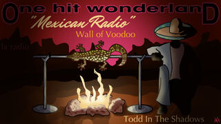 OHW Mexican Radio by krin