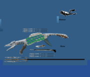 Size comparasince aquamarinear vs human