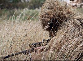 Swat seal battle