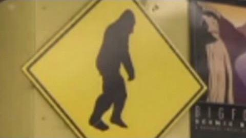 DNA evidence proves Big Foot is real?