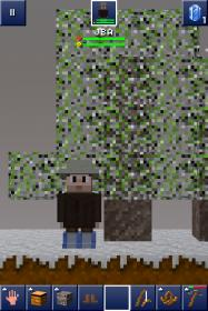 File:Tree in BH.jpg