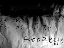 Cat-Lady-Goodbye