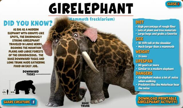 File:Girelephant.jpg