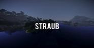 S9 - Straub