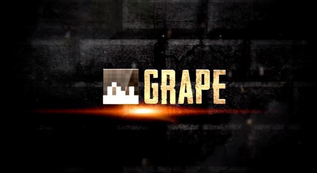 File:S11 - Grape.png