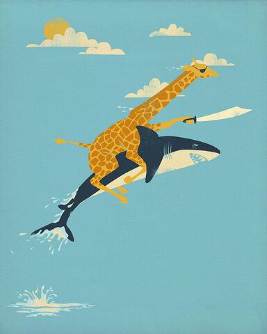 File:Girafferidingashark.jpg