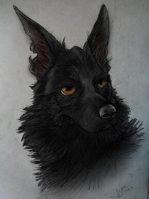 Black dog by valizzl-d51zdvk