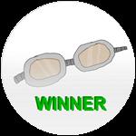 Badge winggoggles