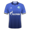 Schalke 04 2016–17 home