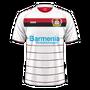 Bayer 04 Leverkusen 2016–17 third
