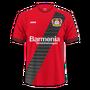 Bayer 04 Leverkusen 2016–17 away