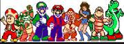 Mari,Luig and Kart Fighters