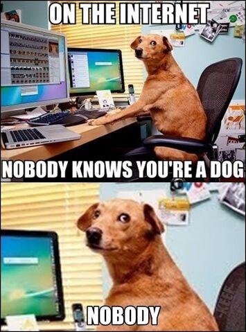 File:Dog on Internet.jpg