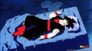 180px-Goku asleep