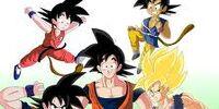 Meet Goku