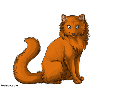 File:Willowpaw.png