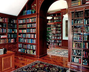 Librarymaybe