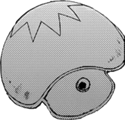 Blue Mush Shield