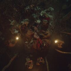 Shamanic ritual in the woods