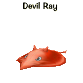 File:Devil Ray in all its glory!.png