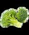 C295 Nutritious salad i03 Broccoli