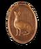 C040 Polar Fauna i01 Polar hare
