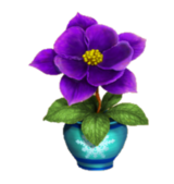 Winters Tale Timed Challenges Rare Flower