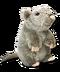 C260 Halloween toys i02 Rat