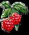 C024 Grandmothers Jam i04 Raspberries