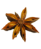 C144 Spice rack i04 Star anise