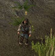 Hermit in the Swamps