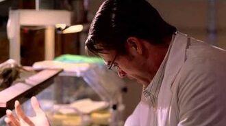 Stan Lees Lightspeed Trailer