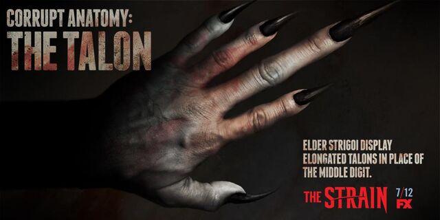 File:Corrupt-Anatomy-The-Talon-the-strain-fx-38643278-1024-512.jpg