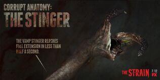 Corrupt-Anatomy-The-Stinger-the-strain-fx-38617383-1024-512