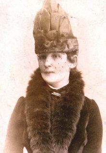 ЕИерБорхсениус1887